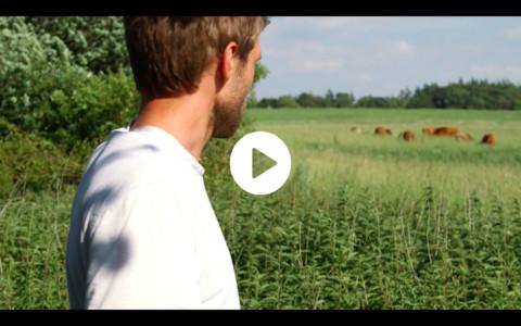 Søtoftes jordbrug / reportage